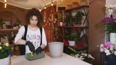 bloom : Florist in own flower shop, preparing a pot for a bouquet Stock Footage