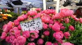 şakayık : PARIS, FRANCE - CIRCA 2017: Florist store selling Coral pink vivid peonies and other spring flower - street shop in French city center