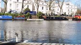 waterway : LONDON, UNITED KINGDOM - CIRCA 2018: Beautiful swan on the Little Venice canal neighborhood pedestrians walking on a warm spring day. It is a Central London Narrowboat in picturesque and calm area Stock Footage