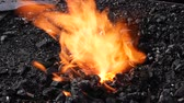 ferreiro : Slow Motion of blacksmith forging fire with black coals and steel part in the burning fire Stock Footage