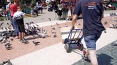 postacı : BARCELONA, SPAIN - CIRCA 2018: courier delivering Amazon Prime parcel transportation cart Placa de Catalunya - parcel fast delivery job part-time slow motion slowmotion pigeon flying Stok Video