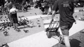 postacı : BARCELONA, SPAIN - CIRCA 2018: courier delivering Amazon Prime parcel transportation cart Placa de Catalunya - parcel fast delivery job part-time slow motion slowmotion pigeon flying - black and white