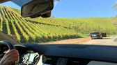 vine branch : DURBACH, GERMANY - CIRCA 2018: Woman driving car in vines fields in Durbach a few meters from Burg Staufenberg castle, Baden-Wurttemberg, Germany