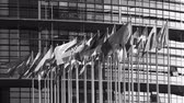 egész : STRASBOURG, FRANCE - CIRCA 2018: Establishing shot newsworthy footage of European Parliament headquarter facade building with flags of all member states waving - black and white