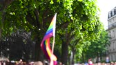 transgender : Man hand waving gay rainbow flag over thousands of people crowd tilt-shift lens used annual FestiGays pride gays and lesbians parade marching French streets dancing fun party atmosphere