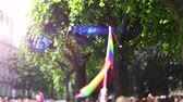 lesbian : Sunlight blue flare over man waving rainbow flag at annual FestiGays pride gays and lesbians parade marching French streets dancing fun party atmosphere