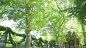 apartamentos : Paris, France - Circa 2017: Emblematic Parisian Marie De Medicis Fountain in Le Jardin du Luxembourg garden with calm water, green trees and tourists and locals resting admiring taking photos the green park