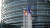 Defocused view of European Parliament headquarter in Strasbourg with all European union member flags waving days before Parliamentary elections on 26 may and slow flowing poplar tree white fluff Filmati Stock