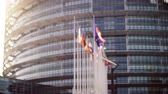 decisões : Defocused view of European Parliament headquarter in Strasbourg with all European union member flags waving days before Parliamentary elections on 26 may and slow flowing poplar tree white fluff Vídeos
