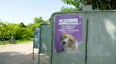 candidato : Strasbourg, France - May 23, 2019: Poster with dog face in green sunny park for 2019 European Parliament election featuring French Parti Animaliste
