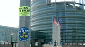 i city : Strasbourg, France - May 23, 2019: I vote sticker on street sign pole with all European union member states flags waving in front of the building 2019 European Parliament election Stock Footage