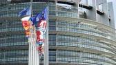 společenství : European Parliament headquarter in Strasbourg with all European Union Flags waving in calm wind in the Sunday of 2019 European Parliament election - sunny clear day slow motion 4k UHD Dostupné videozáznamy
