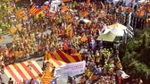 political rally : Strasbourg, France - Jul 2 2019: Drone view aerial of thousands people with Estelada separatist flags demonstrate protest at EU European Parliament - focusing defocusing