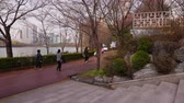 pacing : Korean people walk in spring park along Lake, Seoul Stock Footage