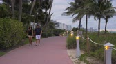 jogging yapan : MIAMI BEACH, USA - NOVEMBER 17, 2018: Joggers, Pedestrians and Tourists on Walkway in Green Lummus Park. Urban Cityscape. Medium Shot
