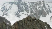 альпинист : Four Climbers on Peak of Rock. Snow-Capped Mountains. Aerial View. Drone is Orbiting