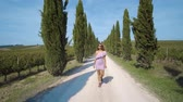 cipreste : Back view a woman in a dress goes away into the distance along the cypress alley, of decorative and neat tall green trees in the park. On a Sunny summer day. 4k Stock Footage