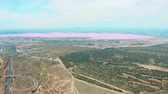 tuzlu : Panoramic aerial view video of Las Salinas, bright color famous place pink lake. coastline of Torrevieja city and Mediterranean Sea. Costa Blanca. Province of Alicante. Spain