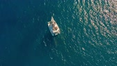 Aerial view. Large sailing catamaran in the open sea.