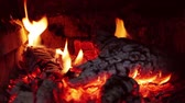 interior : Slow Combustion Fireplace Log Wood Fire Closeup Stock Footage