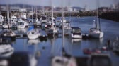 freizeit : Crowded Boat Marina Tilt-Shift Timelapse of Moving Boote