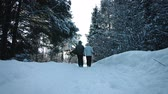 caminhada : Lovely Couple Walking on a Path together and Holding Hands during Beautiful Day of Winter Stock Footage