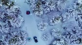 санки : Aerial Video of Family Enjoying Winter and Sliding in Nature