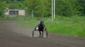 trotting : Riders are preparing for competition on horseback trotters. Riders control the movement of horses. Horses run trot. Sunny summer day at the racetrack. Video slow motion. Stock Footage