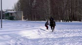 eyer : SLOW MOTION: A girl galloping on a horse at a gallop. A horse is dragging a snowboarder guy on a rope. A snowboarder rides on a snowboard in snowdrifts. Girl jockey and guy snowboarder train in pairs. A sunny winter day.