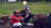 koňmo : Ulyanovsk, Russia - July 29, 2018. Competitions for trotting horse racing. Start riders with trotting horses. Slow motion.