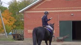 jokey : Portrait of a beautiful female jockey on a horse. Break between competitions. Slow motion. Stok Video