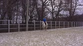 equitation : A young woman is riding a white horse in a fenced area. Cloudy winter day.