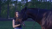 vaquera : Stallion on a summer morning. Archivo de Video