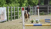 jokey : SLOW MOTION: A young woman jockey on a small horse (pony) performs at equestrian competitions. Summer sunny day.