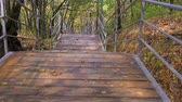 descida : Descent down a steep wooden staircase. The camera moves along a wooden staircase down to the water in an autumn park. Stock Footage