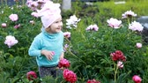 piwonie : Child girl smells the aroma of peony flowers. Baby walks in the garden with peonies