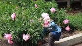 piwonie : Child girl sniffs the aroma of peony flower and sneezes. Childrens allergies. Wideo
