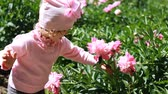 şakayık : Child girl sniffs the aroma of peony flowers. Baby walks in the garden with peonies