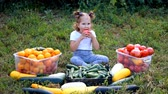 zucchine : Child girl eating vegetables. Harvest of farming. The baby is vegan. Vegetarian food. Ripe tomatoes, zucchini and cucumbers Filmati Stock