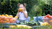 palánta : Child girl eating vegetables. Harvest of farming. The baby is vegan. Vegetarian food. Ripe tomatoes, zucchini and cucumbers Stock mozgókép
