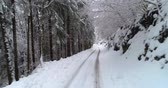 pin : forest road in winter with snow