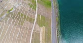 leman : 4K Aerial footage of Vineyard fields in Terrasses de Lavaux near Lausanne in Switzerland Stock Footage