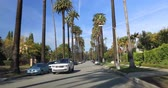 bairro : Beverly Hills, CA, USA - January 10, 2018: Driving down a Beverly Hills street with palm trees