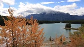 Two Jack Lake with oranga aspens on foreground, Banff National Park, Alberta, Canada