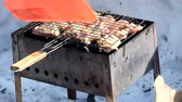 basting : Chicken barbecue on grill Stock Footage