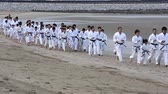сторонник : KAGAWA, JAPAN-Jan 2: Japanese karate martial arts training of karate in midwinter of a new year at Ichinomiya Beach, January 2, 2016, Kagawa, Japan