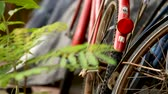 bike ride : BANGKOK, THAILAND - October 24, 2012. Old rusty bicycles parked in the barn in Lumpini park. Stock Footage
