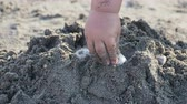 навыки : Baby playing on beach. Kids hands full with sand. Outdoor games.
