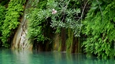 つる : Goynuk river flows through a beautiful canyon. Natural landmark in Antalya province of Turkey. Water part of Lycian trail. 動画素材