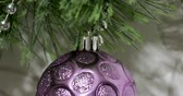 bead : Christmas and New Year background with violet shiny ball on Christmas tree branch.